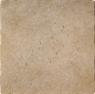 Picture of Da Vinci Noche